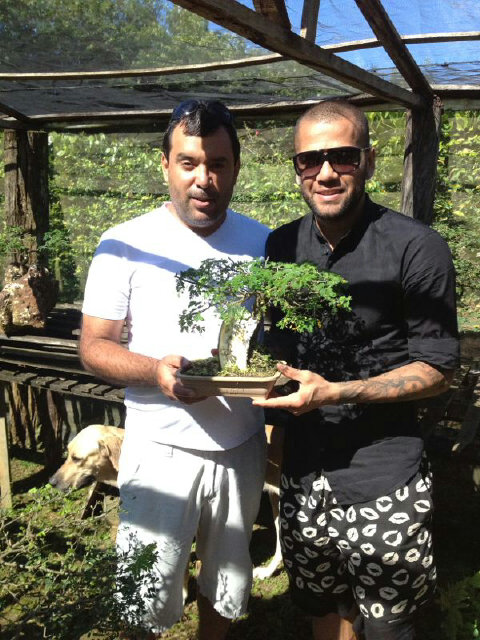 dani-alves-bonsai_1.jpg